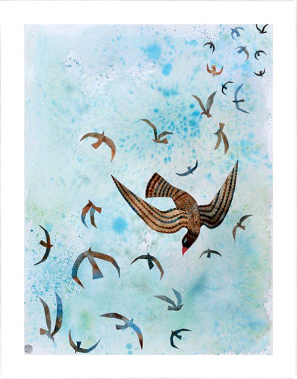 Sky Dance Image
